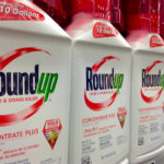 Monsanto Roundup Lawsuits Grow to Over 800
