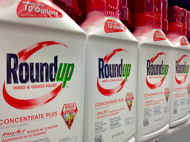 Roundup Weed Killer Suspected Of Causing Cancer Saunders