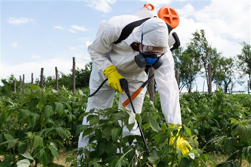Roundup Weed Killer Is Highly Used Nationwide