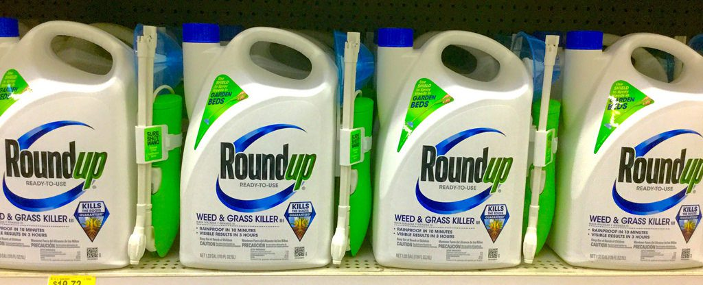 Judge Orders Roundup Lawsuits to Continue